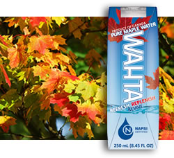 DisfrutaBox Despierta Wahta Maple Water Taste of America