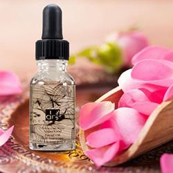 dr botanicals moroccan rose superfood face oil