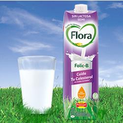 DisfrutaBox Reset Flora B Folic