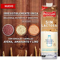 DisfrutaBox Castana Pascual Sin Lactosa Cereales y Semillas