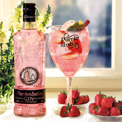 Gin PUerto de Indias Strawberry en DisfrutaBox Summer Love